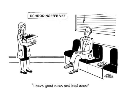 schrodingers-cat